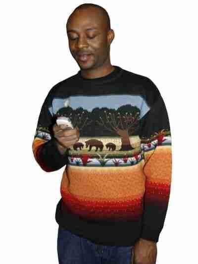 Bear-themed sweater